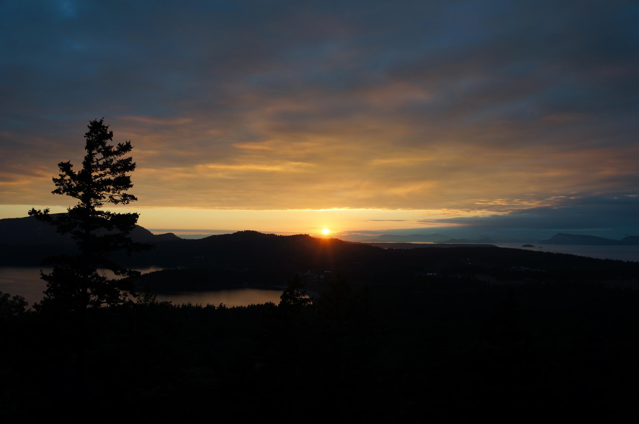 IOA_Orcas_Sunset.jpg