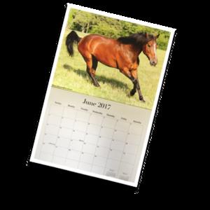 RC+2017+Calendar+pix.png