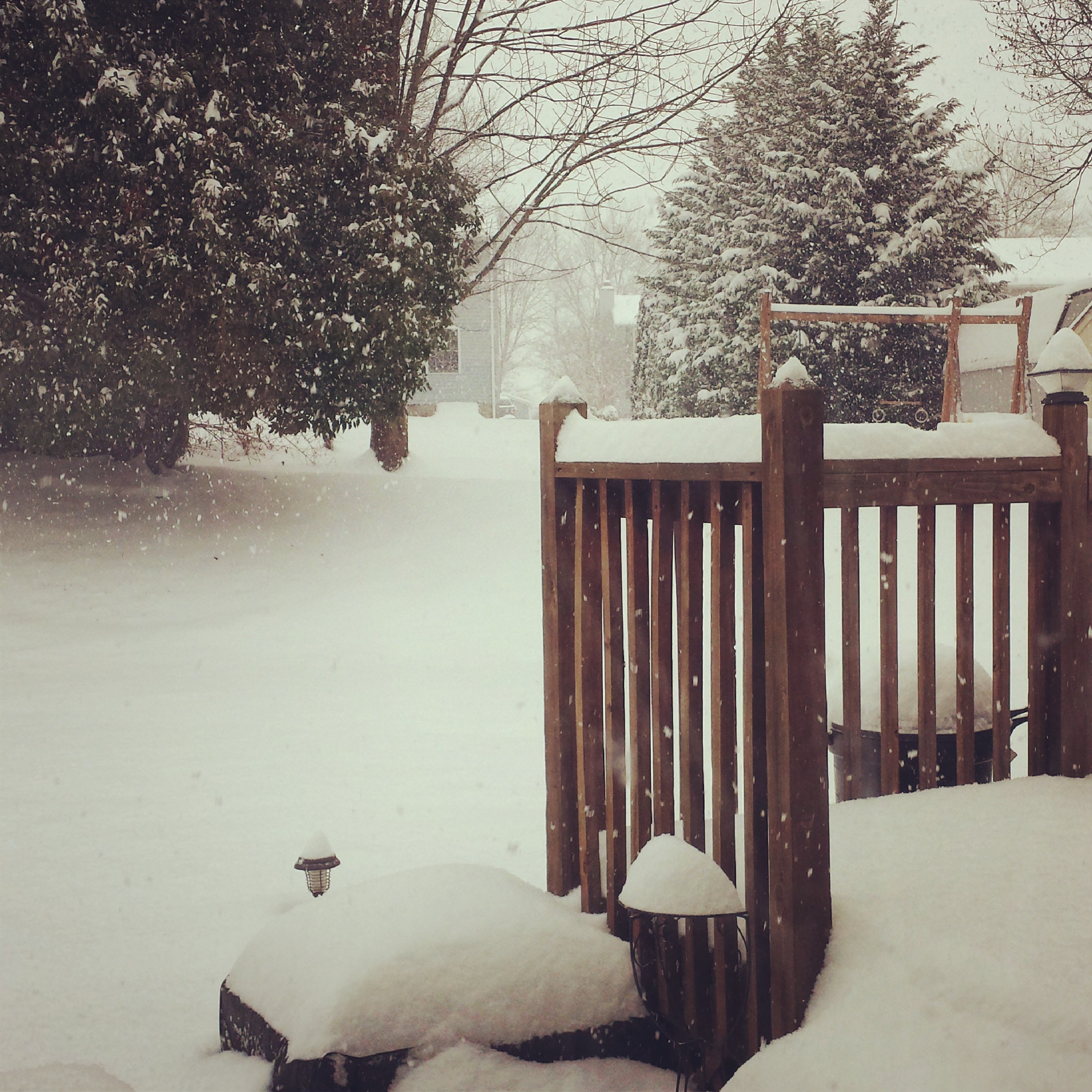 Oh the winter of 2013-2014. The winter that brought us the infamous 'Polar Vortex'. And polar it was! We started getting snow back in Oct. 2013 and we still had some by late March.