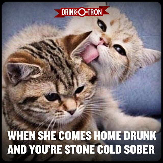 #drinkotron #drinkotron#drunkpotato #balagan #drinkinggames#hangover #beer #drunk #cheers#daydrinking #iphone #android #free #app