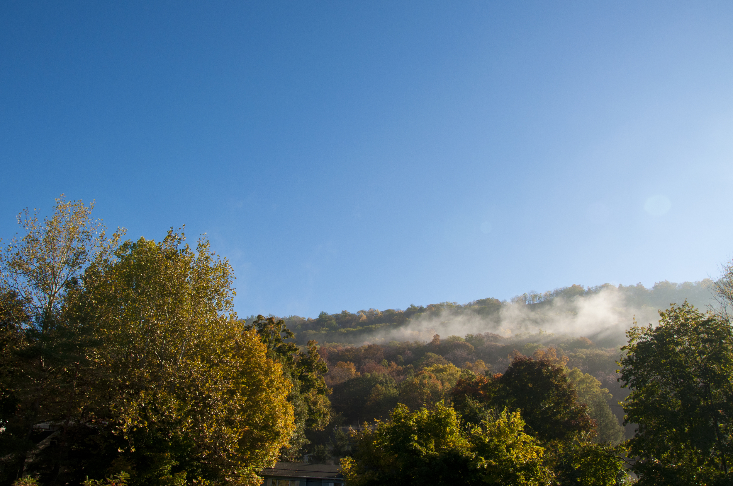 While driving to the outlets that A.M., I snapped this shot of the forest fog spotted along the highway - pure * m a g i c *