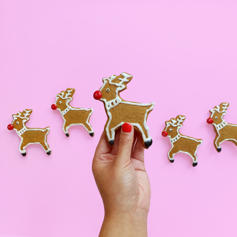 amy_chen_design_reindeer_rudolph_christmas_cookies_2.jpg