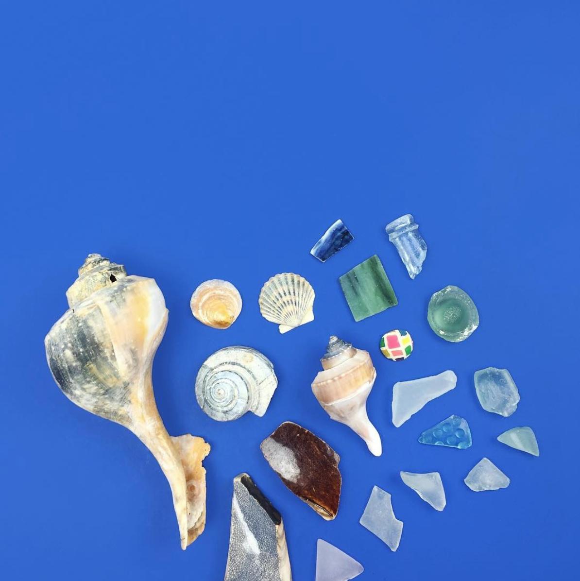 amy_chen_design_coney_island_beach_combing_finds_seaglass_seashells