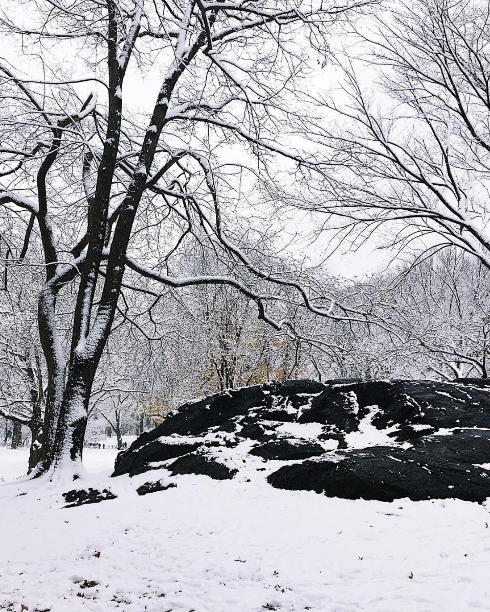 amy_chen_design_central_park_nyc_new_york_snow_day