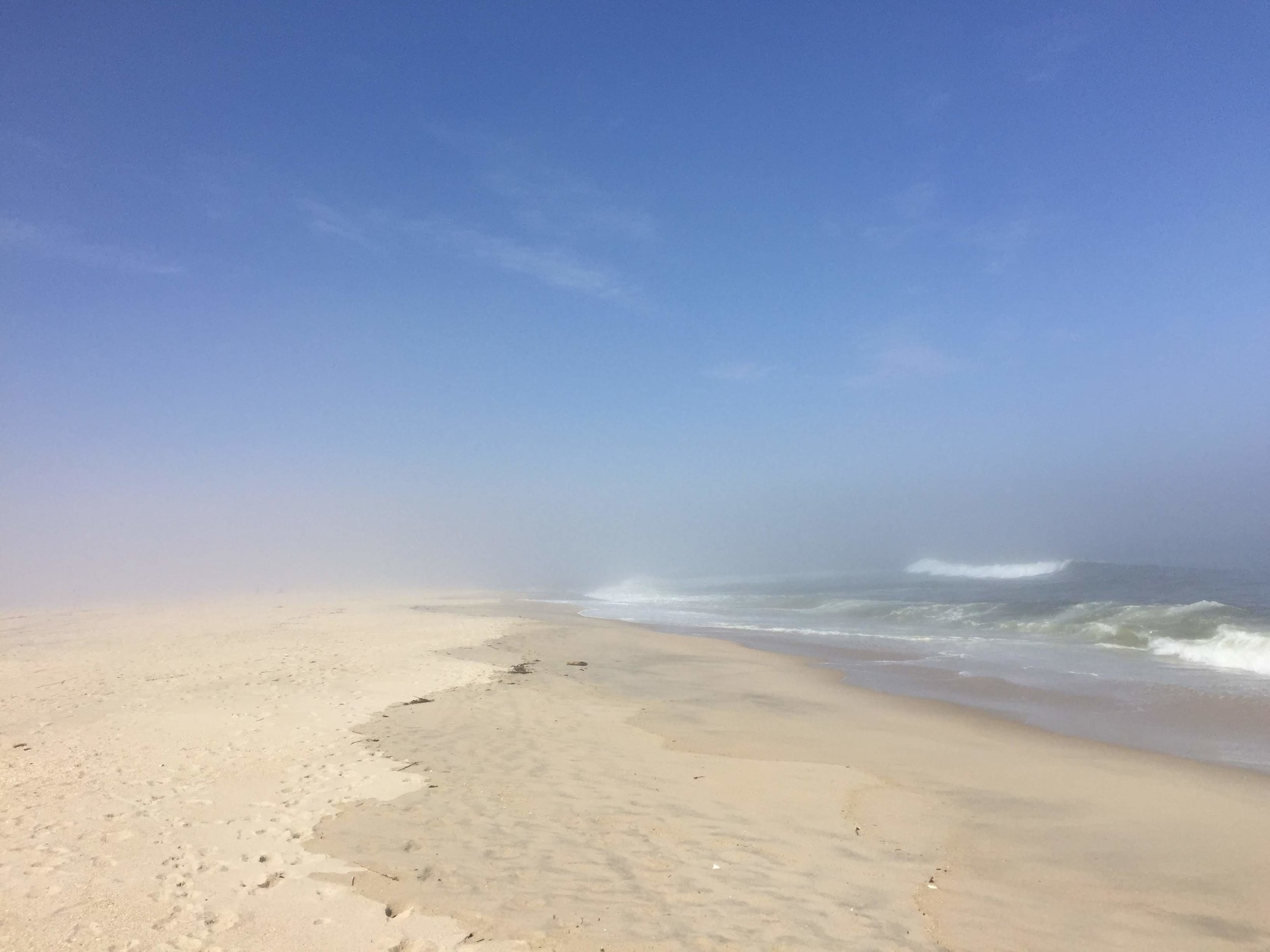 amy_chen_design_sandy_hook_beach_clean_fog.JPG