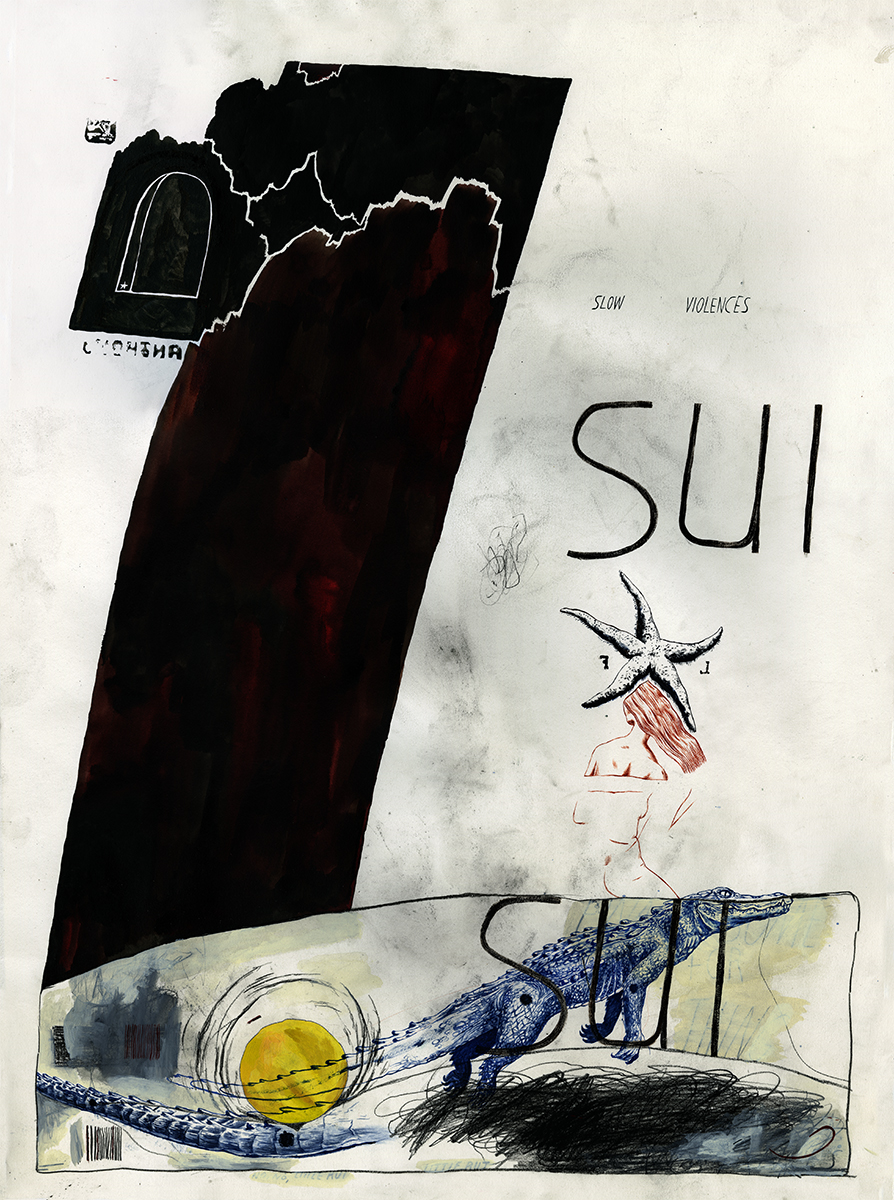Sui Sui, 2015 Acrylic gouache, ink, and charcoal on paper 30 x 22 inches