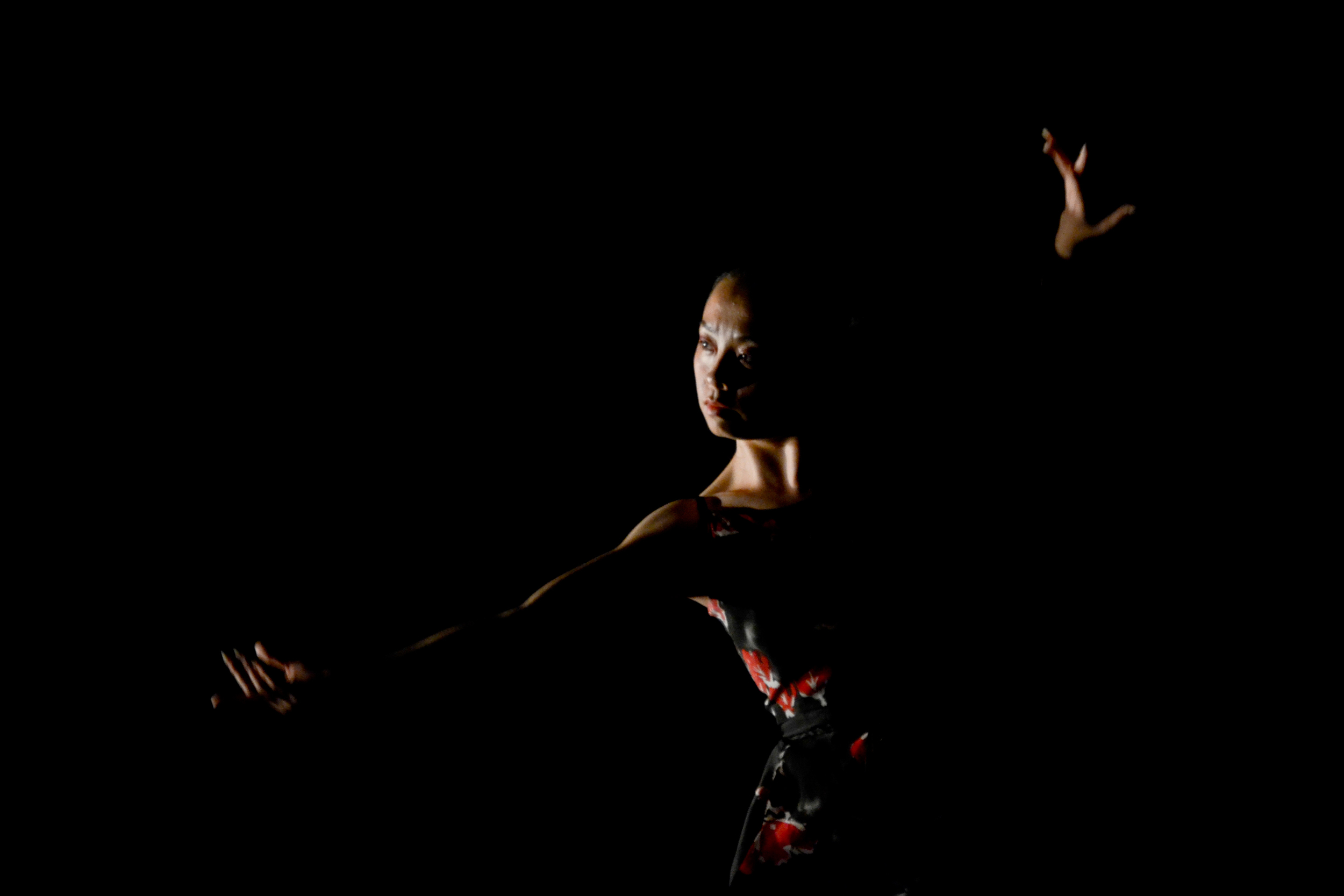 FDT 2012 PR Image 18x12 5.jpg