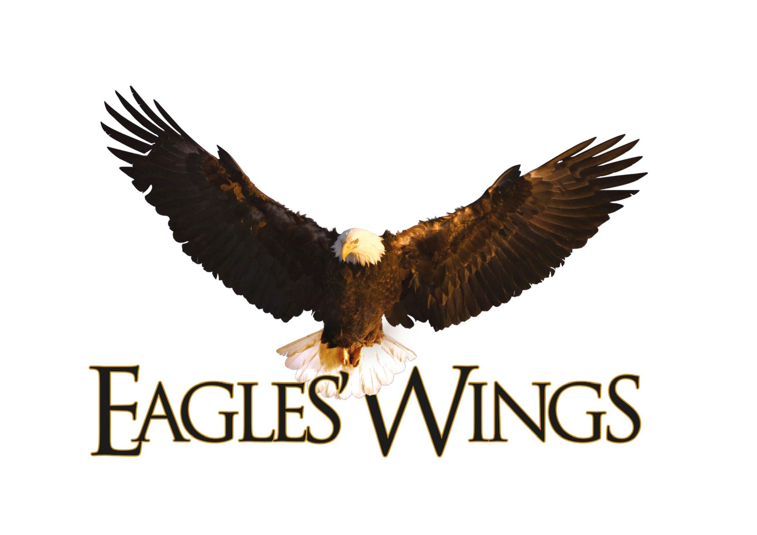 EaglesWings.png
