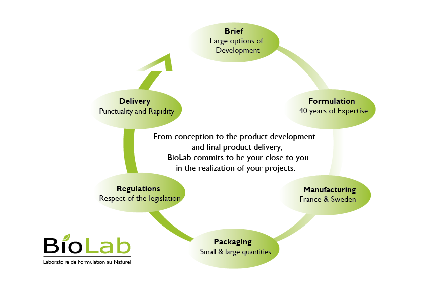 BioLab' project development diagram