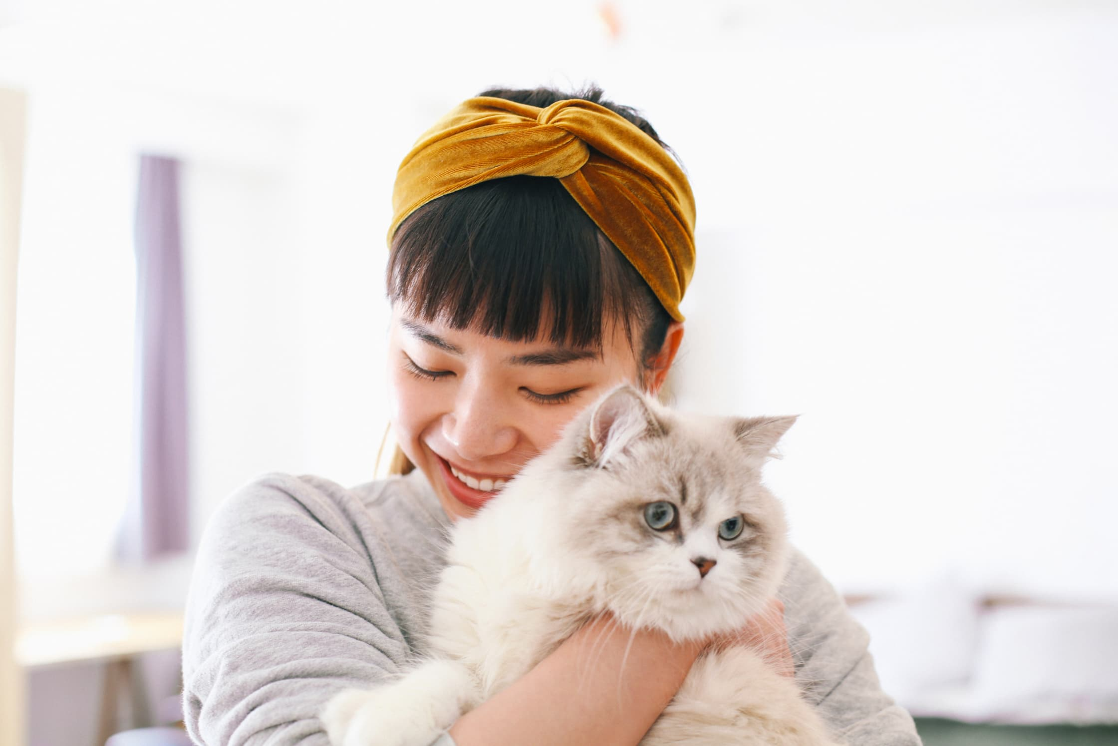 asian-millennial-woman-with-mustard-velvet-headband-holding-fluffy-pet-cat.jpg