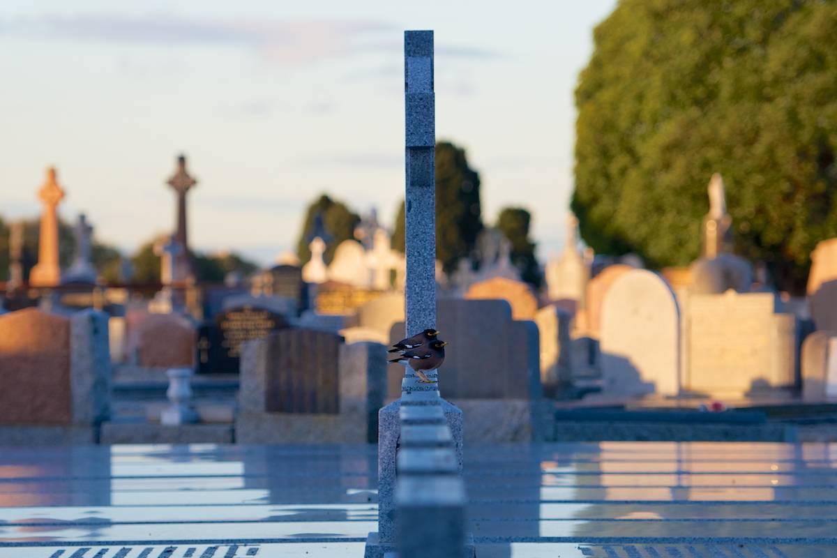 Melbourne General Cemetery (10).jpg