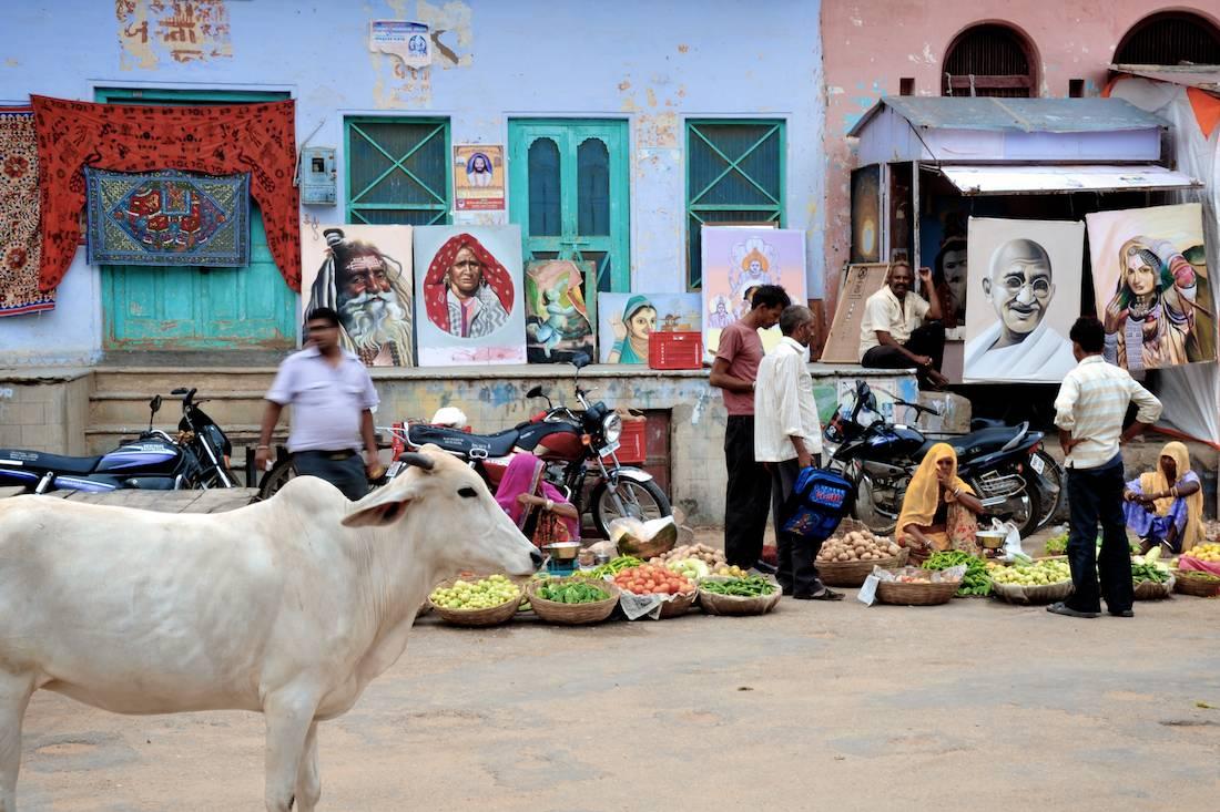 Northern India (12).jpg