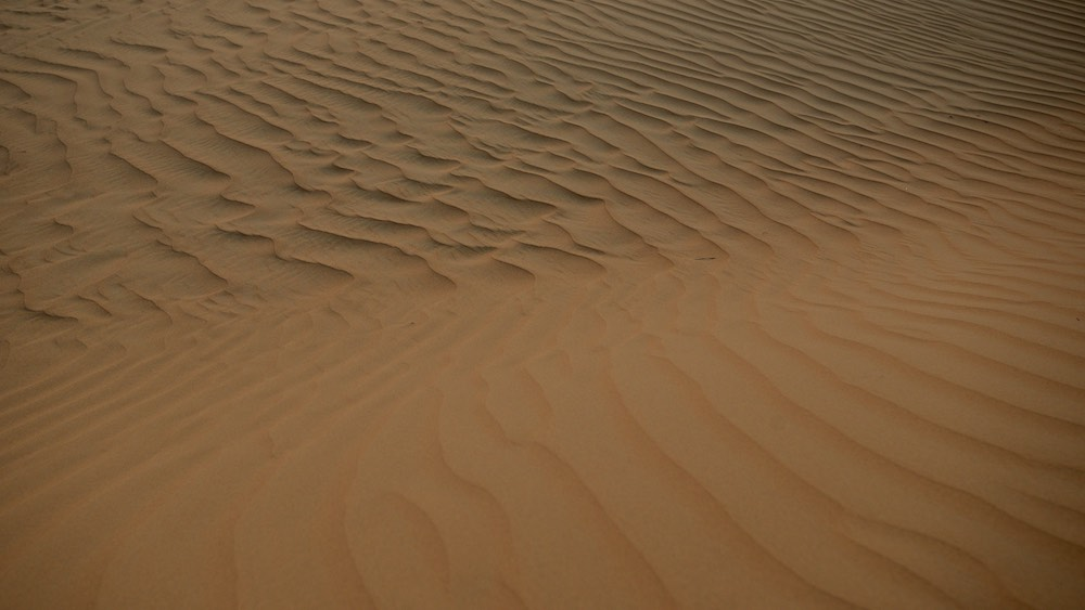 Dubai Desert (7).jpg