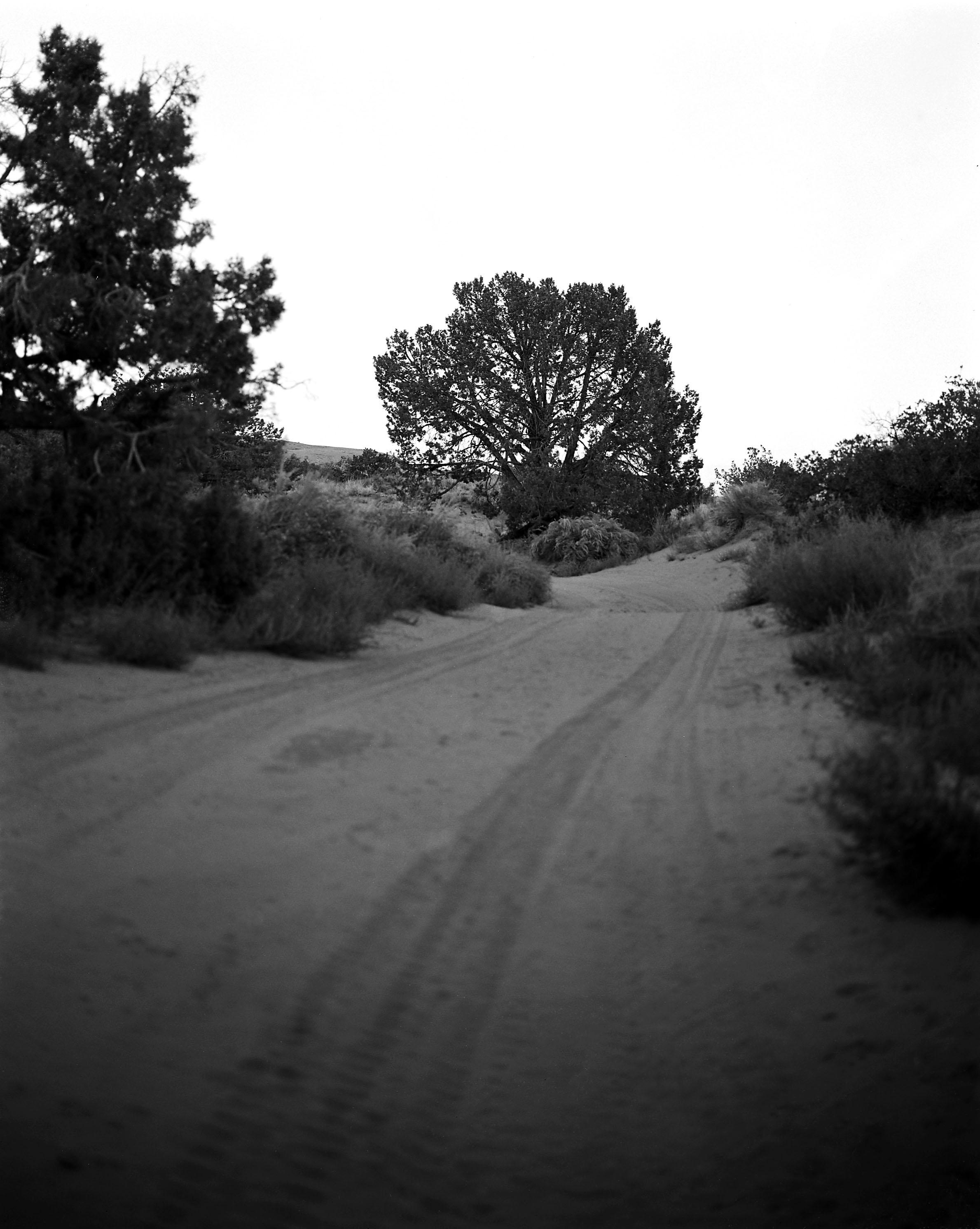 Sandflatsdriveway.jpg