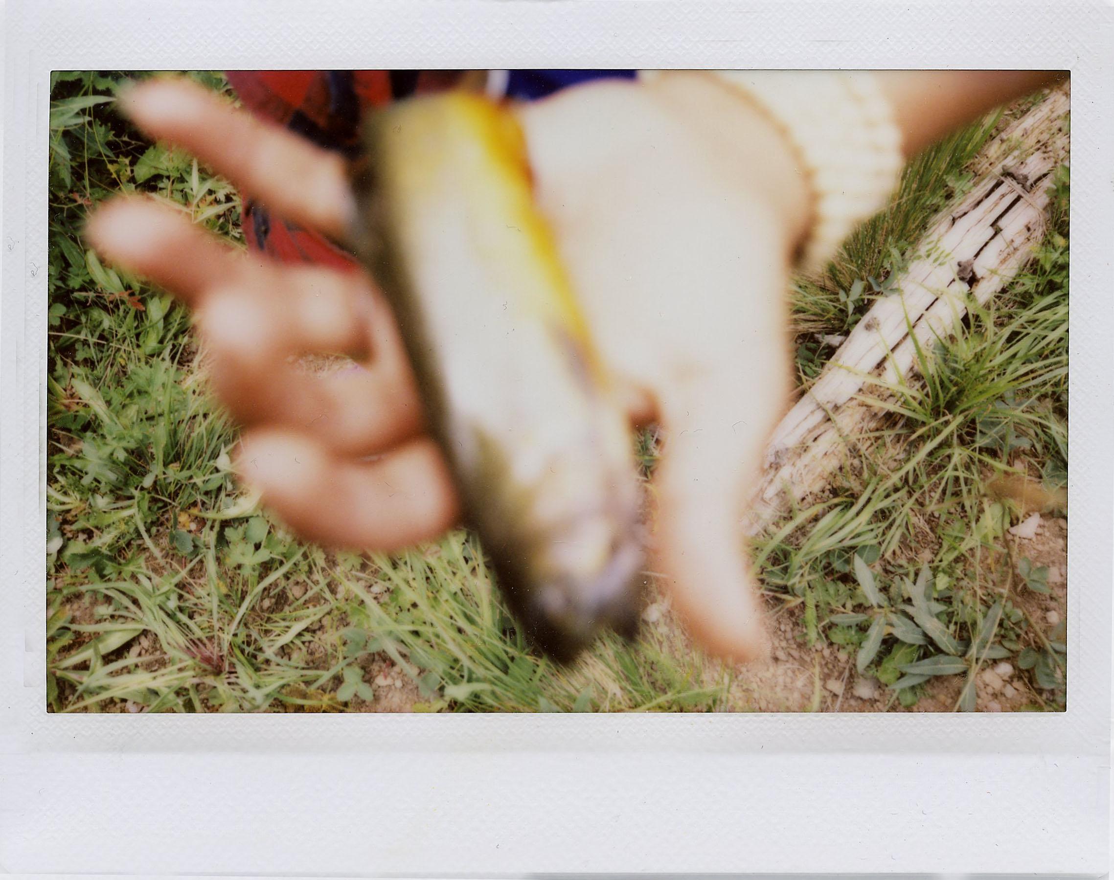 FirstFish.jpg
