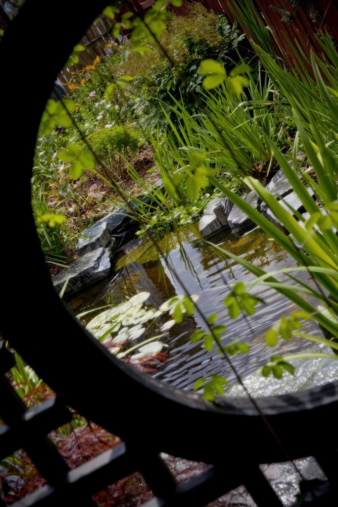 mark bowering-garden-040 683x1024.jpg
