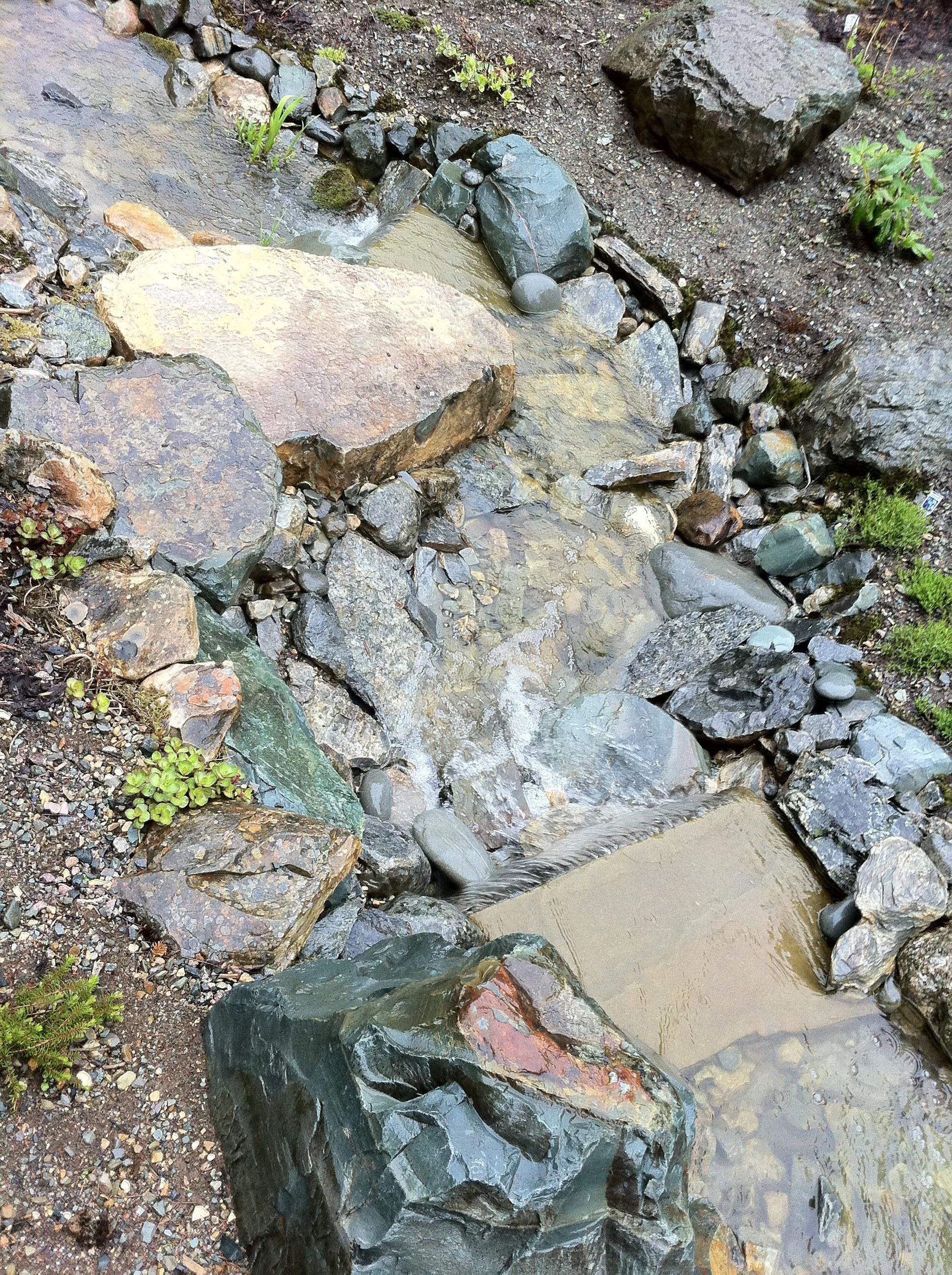 old broad cove stream.jpg