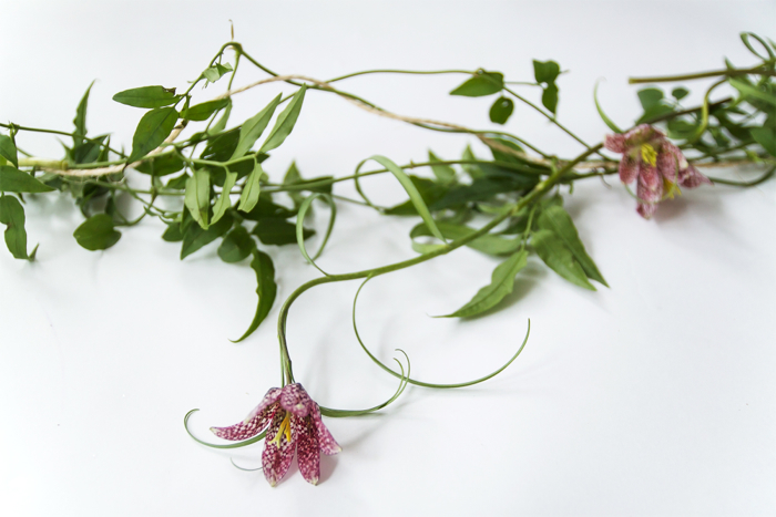 Step 2: Begin to work in your flowers. Like the vines, we let some of our blooms drape beneath the garland.