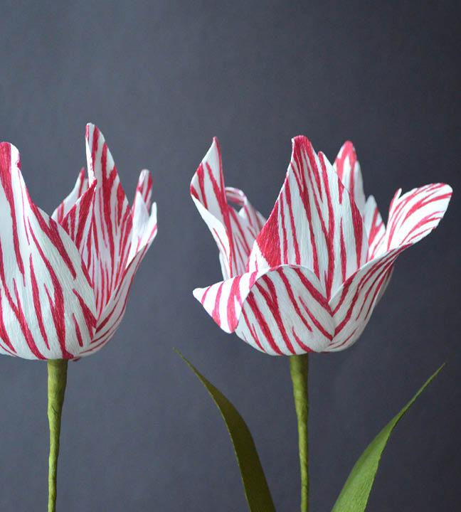 studio carta | paper flowers12.jpg