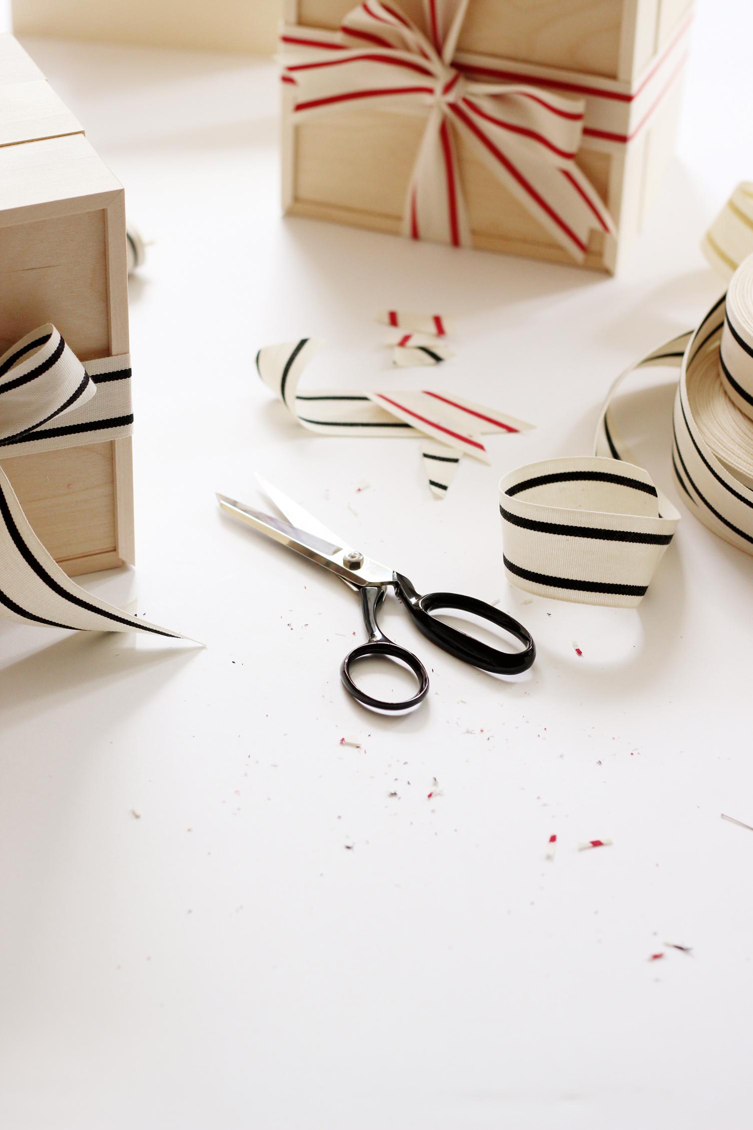 dressmaker shears - studio cartaW.jpg