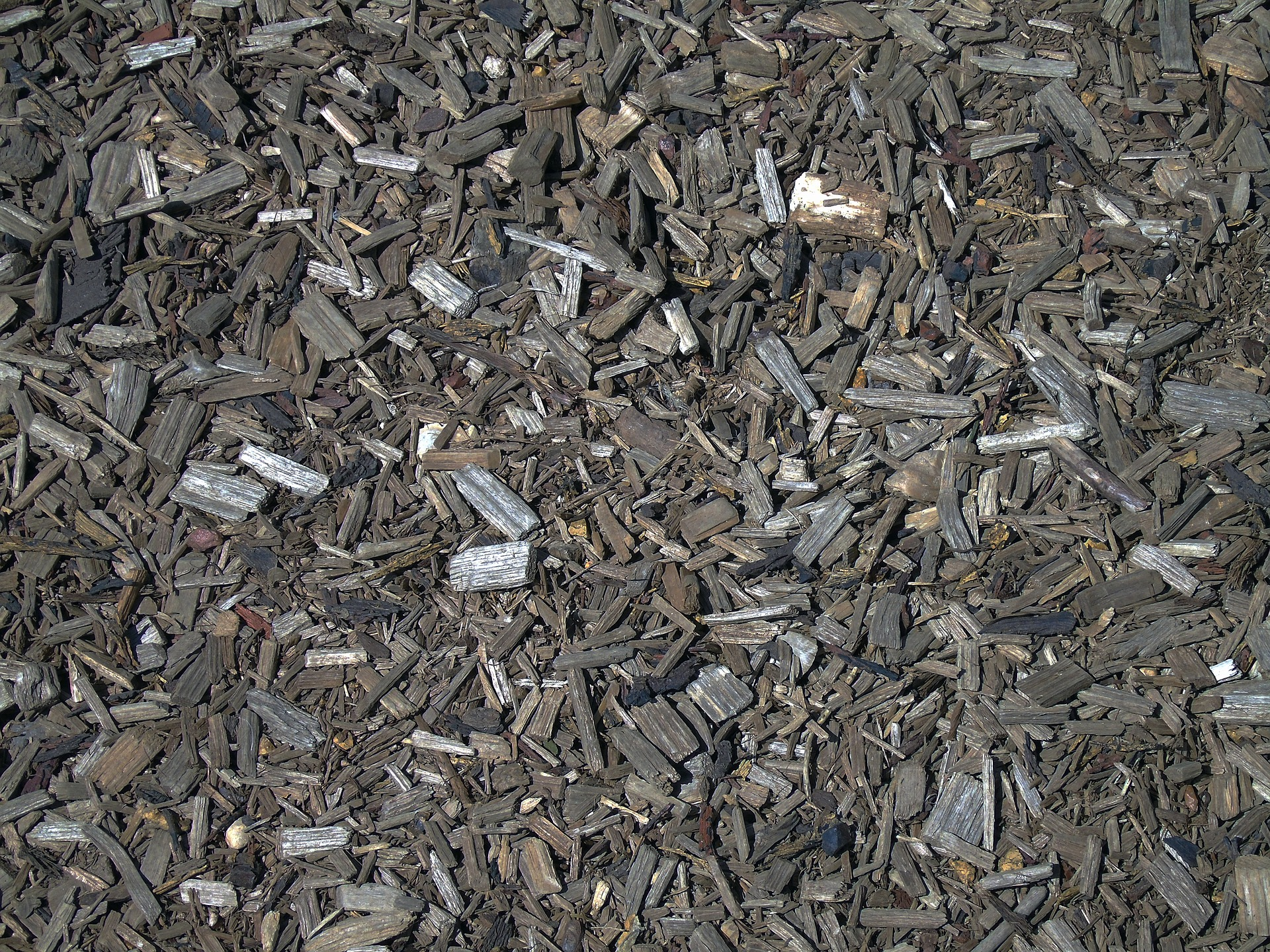 A layer of  ORGANIC MULCH  can help reduce the amount of moisture evaporating from the soil.