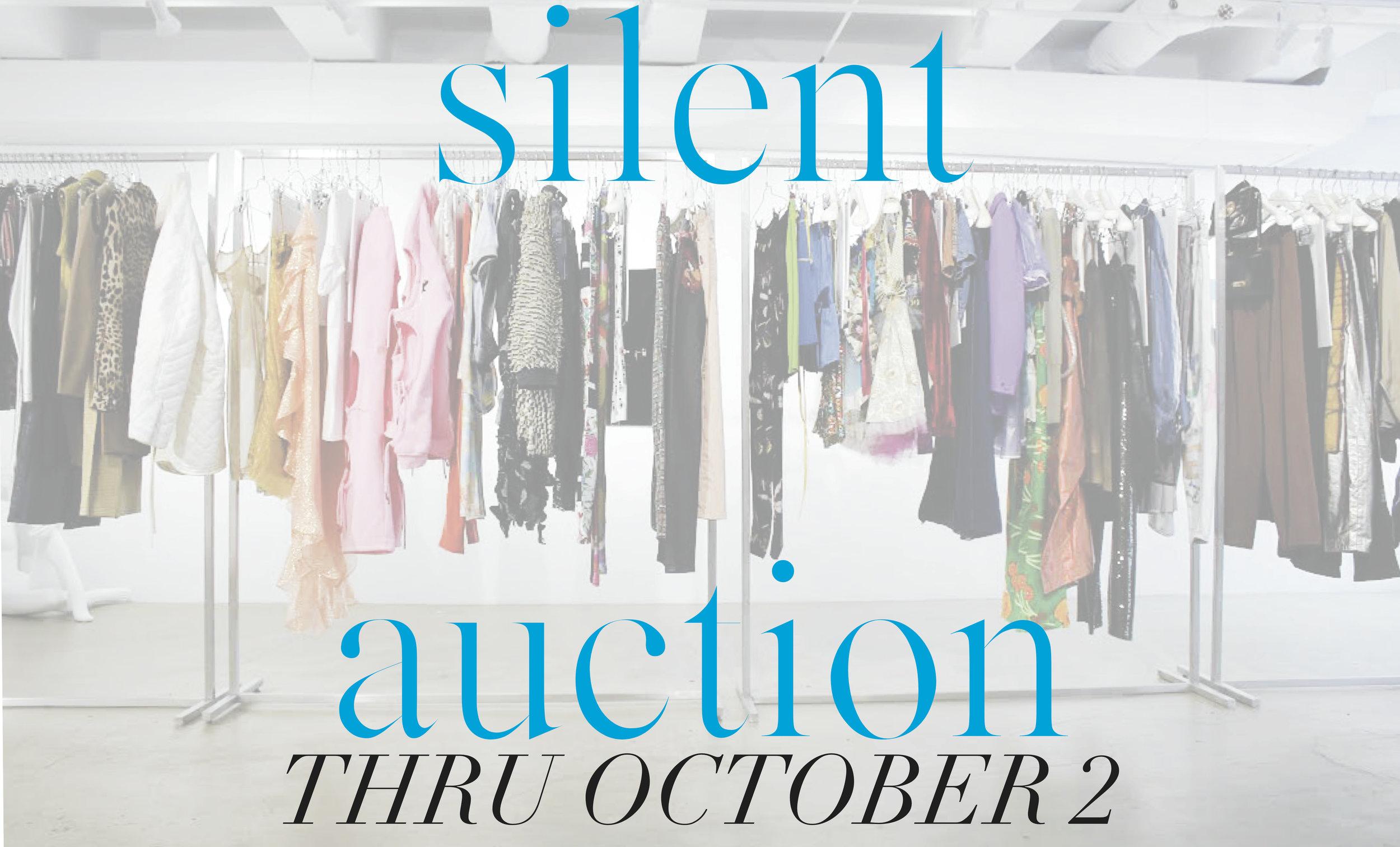 silent auction banner.jpg