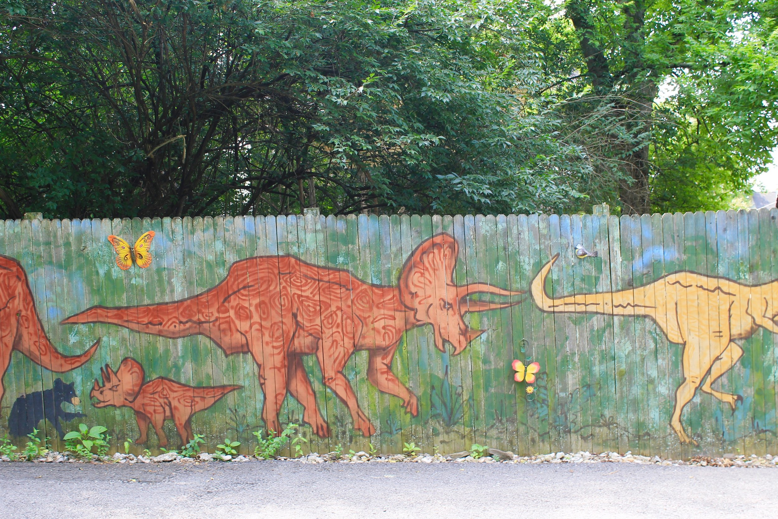 Back fence in the alley way behind the Loy house. Dinosaur mural by
