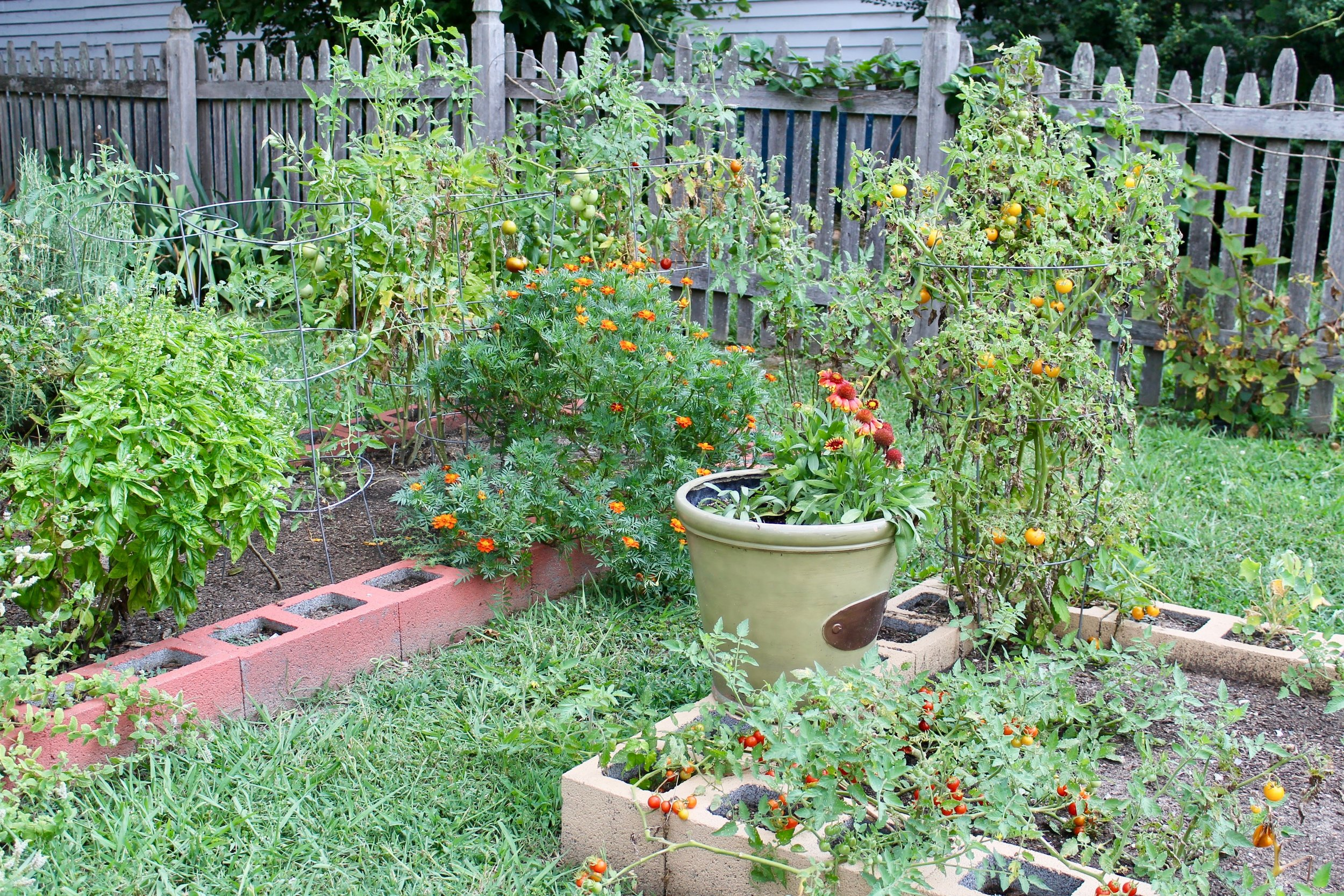 Raised beds in the front and side yard are home to tomatoes, peppers, and all kinds of herbs