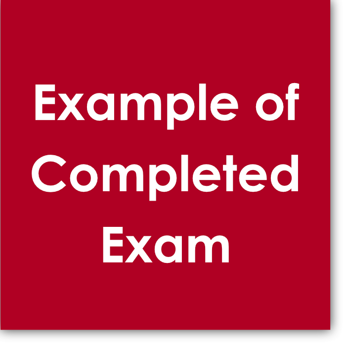 This  Example of Completed Exam  let's you see a real exam completed by an Opus 1 piano student who received a Distinction score, allowing you a deeper understanding of how the exam is laid out, the type of comments judges will share, and the type of mistakes that lead to specific point deductions.