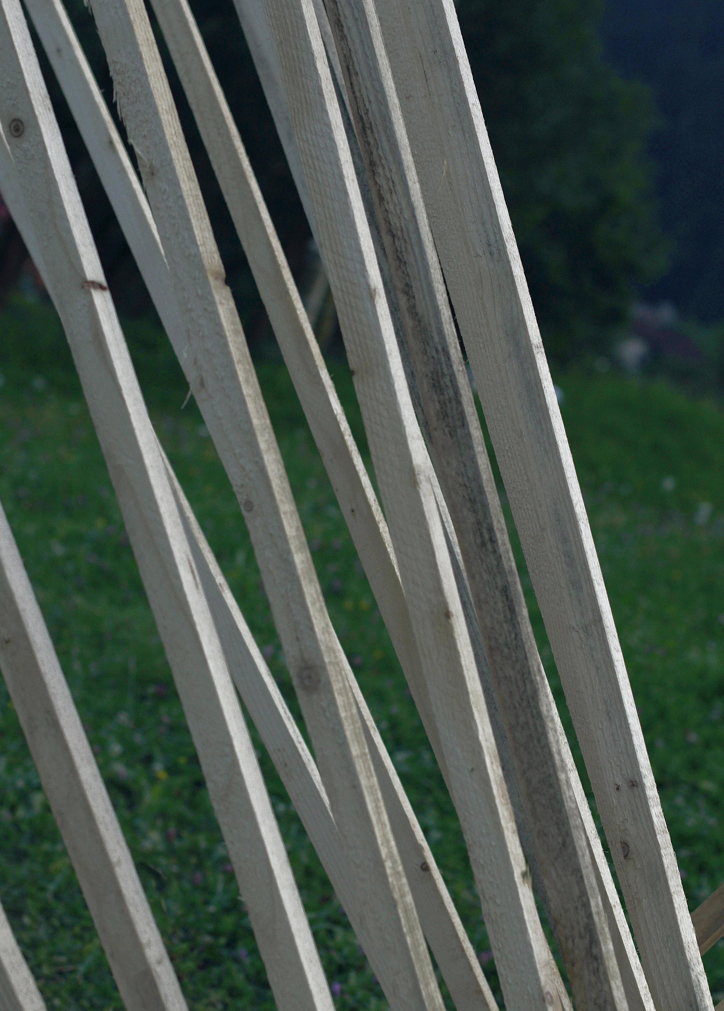 02_wooden_ferrari_foto_a_schmidt.JPG