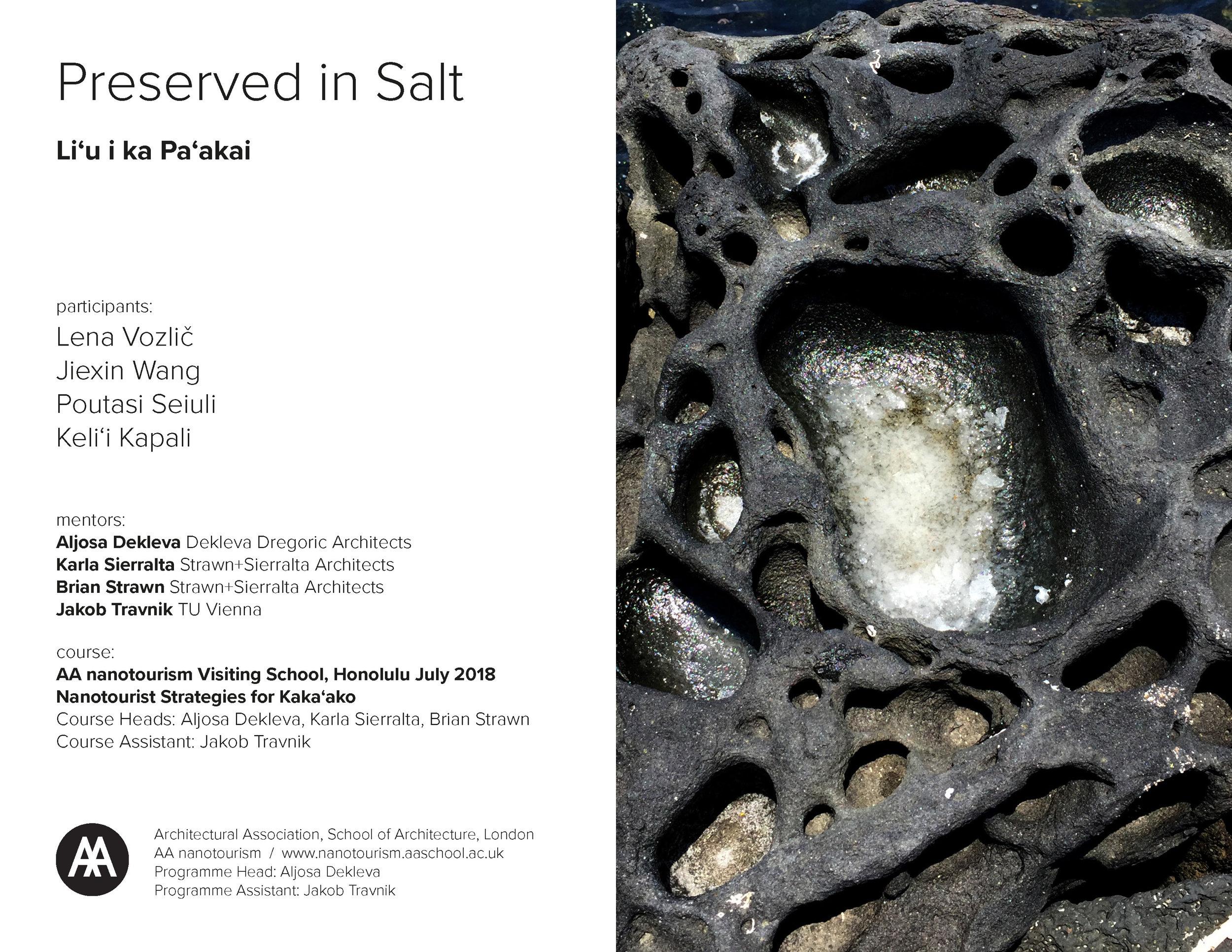 AAnt18_Salt Group_pdfpresentation_final_Page_01.jpg