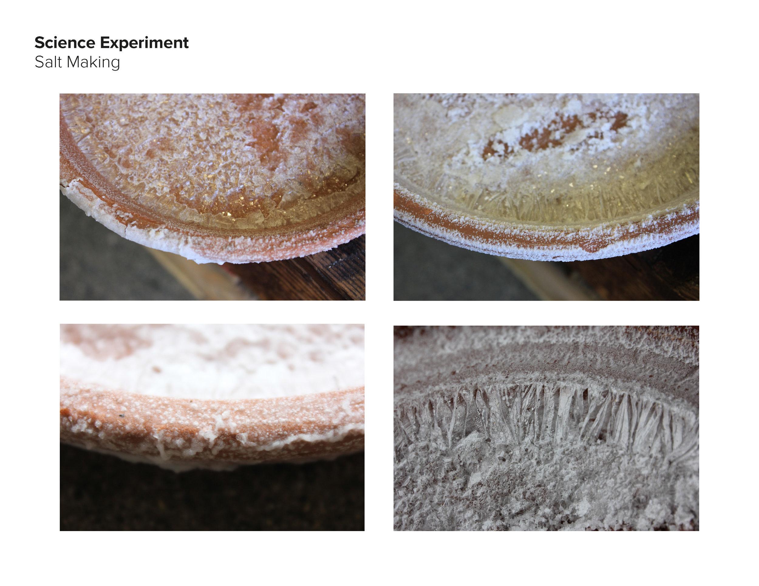 AAnt18_Salt Group_pdfpresentation_final_Page_39.jpg