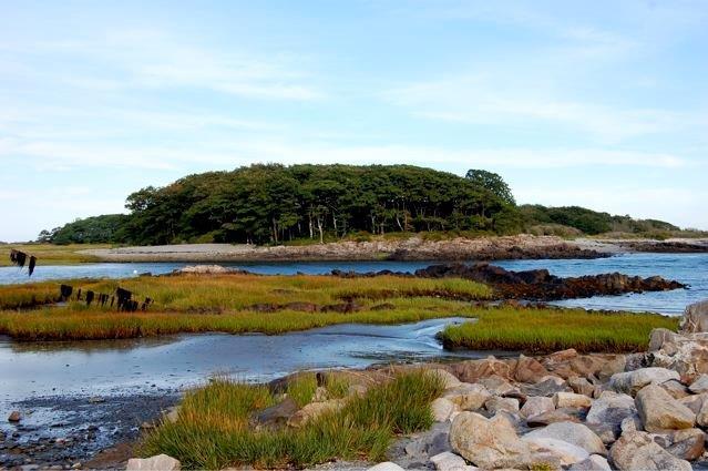 Vaughns Island--Dave Jourdan photo.jpg