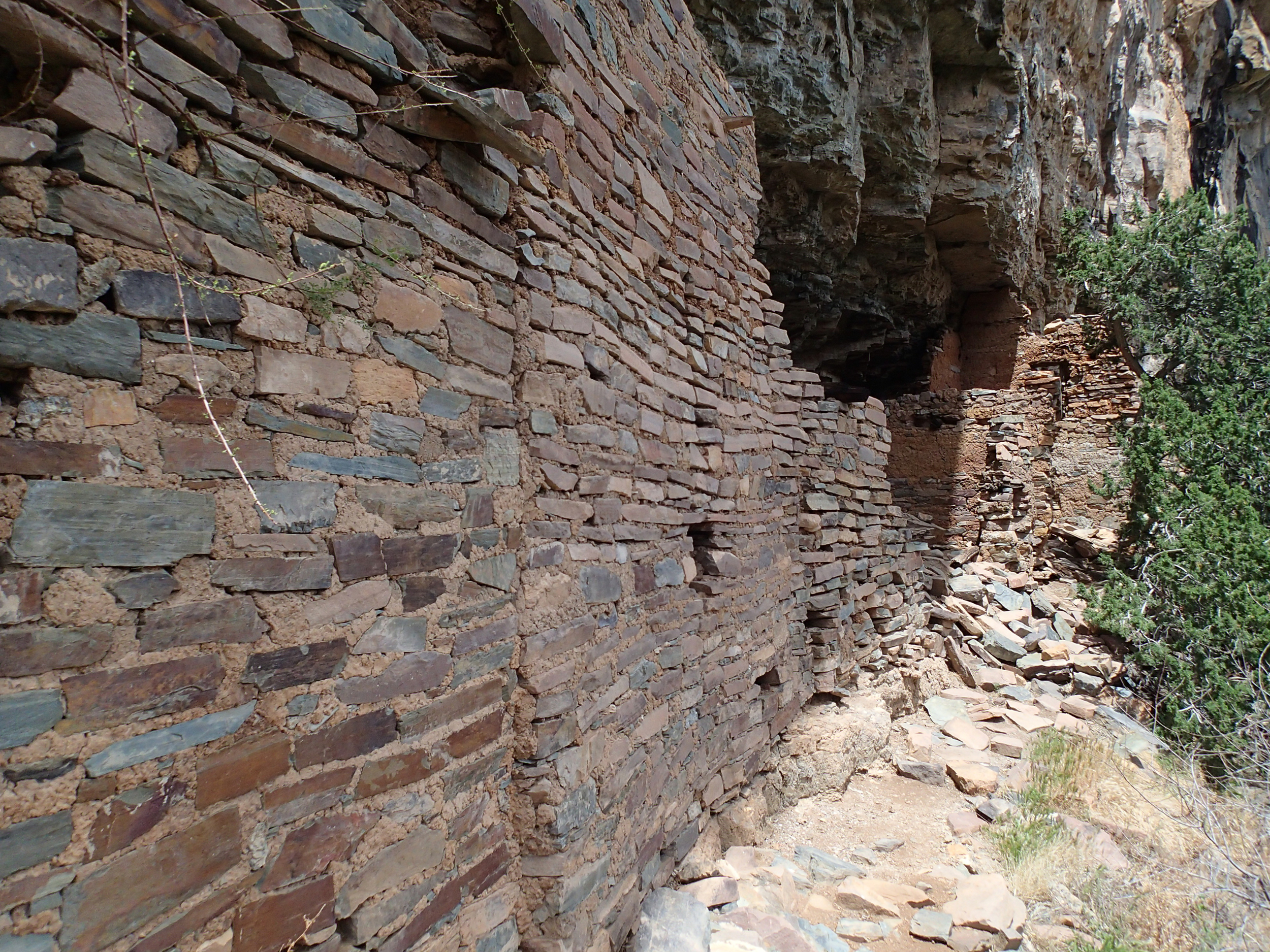 Pueblo Canyon, AZ - 116