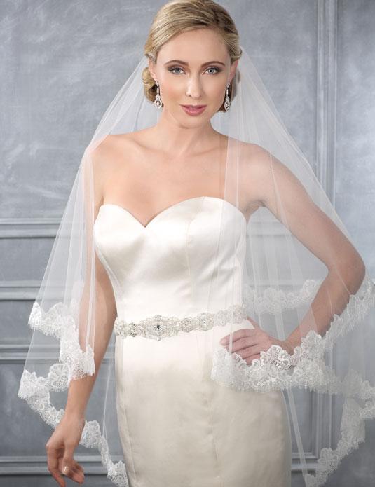 V7210   Chantilly lace waltz length veil