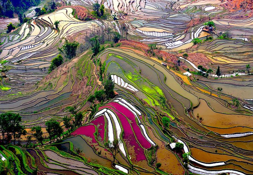 Rice terraces, China   These ancient, man-made rice terraces are fairly common throughout Southeast Asia, particularly in Vietnam, China, and the Philippines.