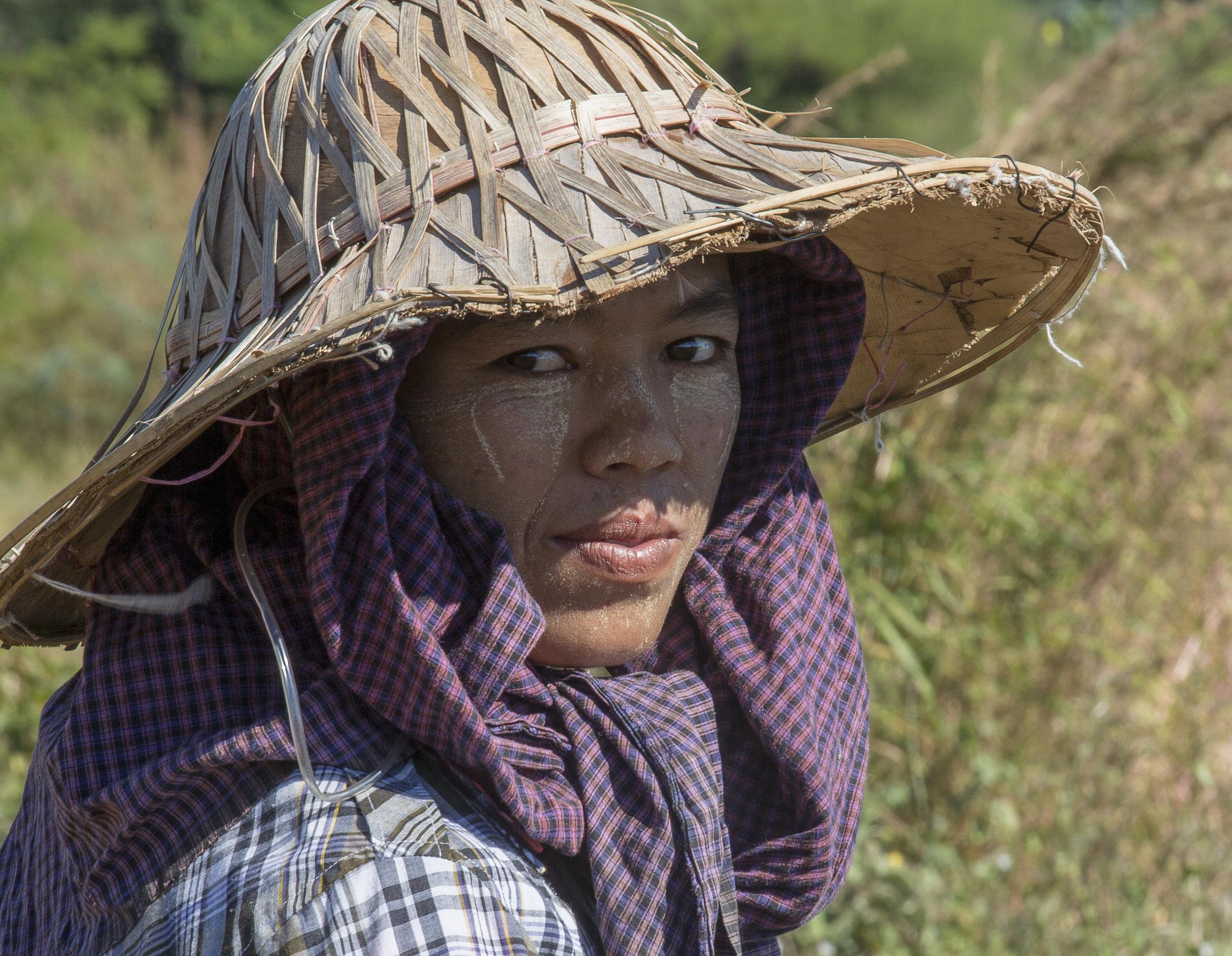A farmer in Myanmar's dry zone.