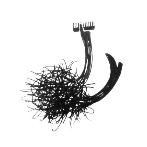hairmonster_gallery_0024_5.jpg