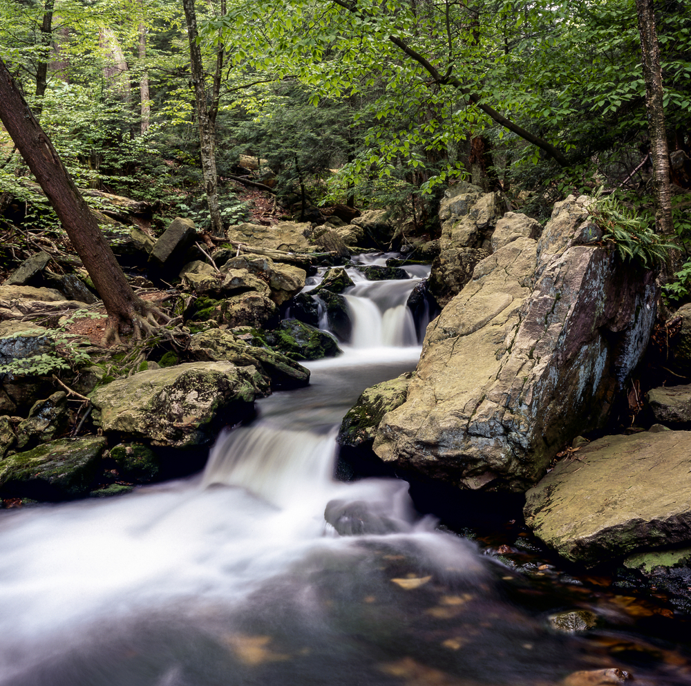 This picturesque landscape of New Hampshire is home to a fabulous Apparel & Home Lifestyle company