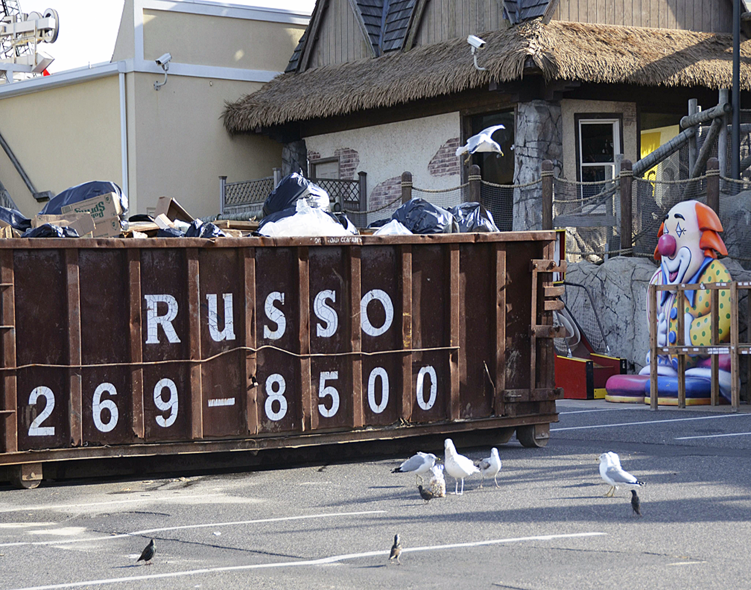 Dumpster, Sea Gulls, and Clown