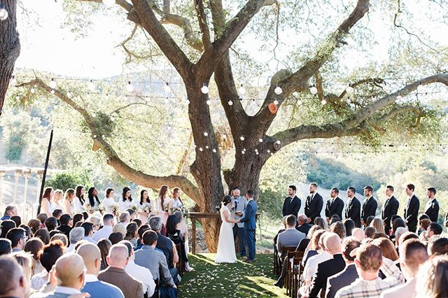 Another one from our ceremony 😍⠀⠀⠀⠀⠀⠀⠀⠀⠀ ⠀⠀⠀⠀⠀⠀⠀⠀⠀ Venue: The Double G Ranch⠀⠀⠀⠀⠀⠀⠀⠀⠀ Photography: @shiannacook⠀⠀⠀⠀⠀⠀⠀⠀⠀ Rentals: @stecklaireventco ⠀⠀⠀⠀⠀⠀⠀⠀⠀ ⠀⠀⠀⠀⠀⠀⠀⠀⠀ #farmtables #weddingtables #rusticweddingtables #woodtables #rusticwedding #sdwedding #sandiegowedding #weddinginspiration #engaged #bridetobe2019 #weddingrentals #specialtyrentals #eventrentals #tablerentals #woodworking #weddingideas #farmtablerentals #bride #married