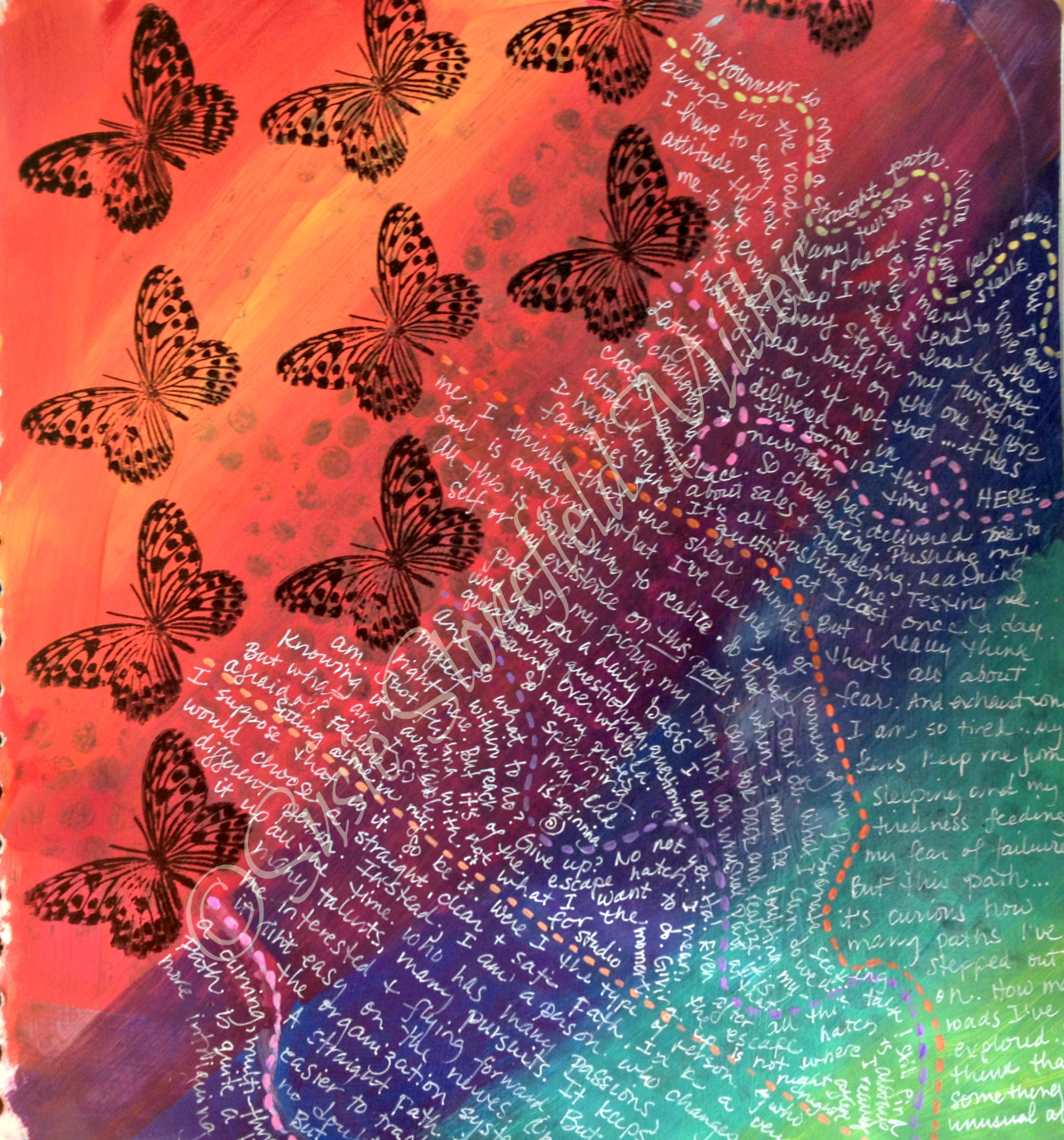 butterfly paths higer res wm.jpg