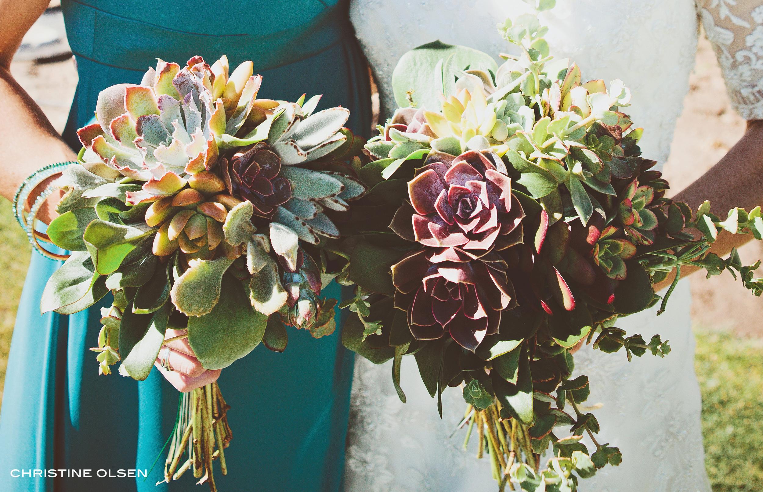 succulent bouquets.jpg