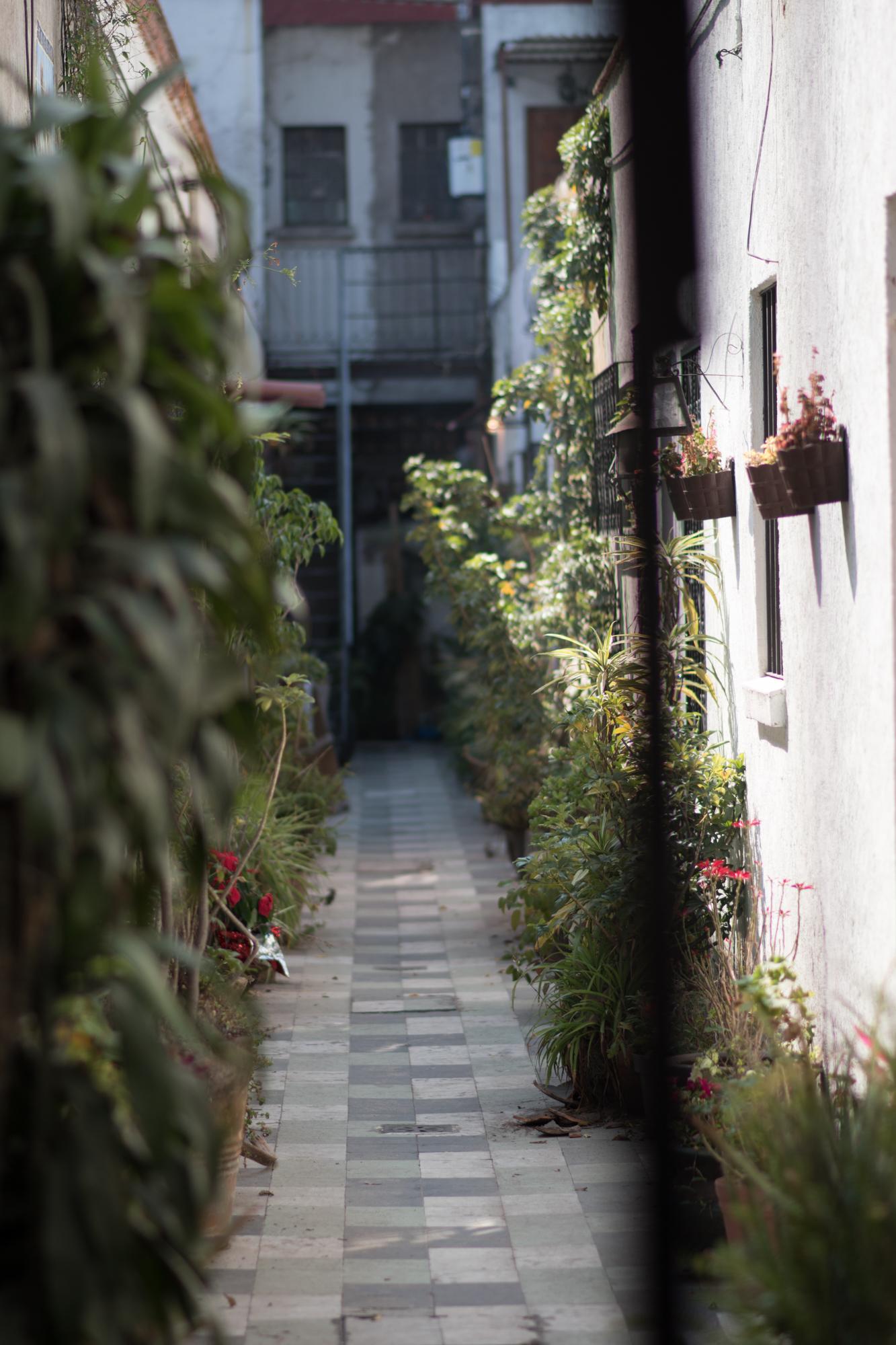 Kyle Studstill_photojournal_travel_Mexico City-57.jpg