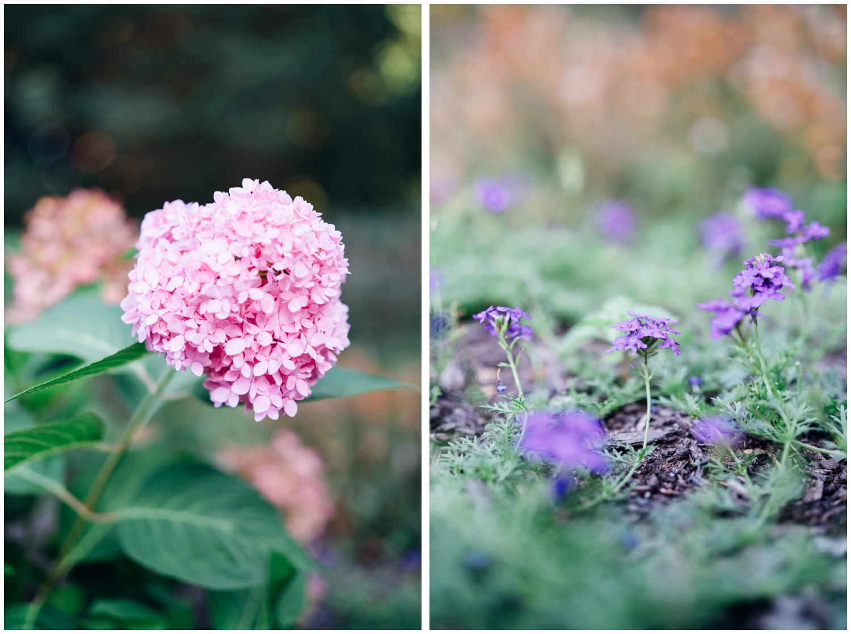 Chike Photography - Deep Cut Garden - Engagement (71 of 74).jpg
