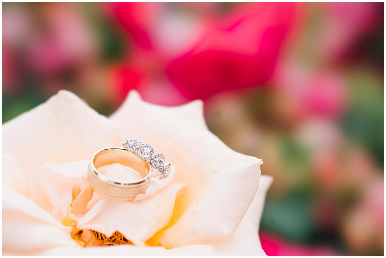 Elizabeth Park Wedding - West Hartford_0023.jpg