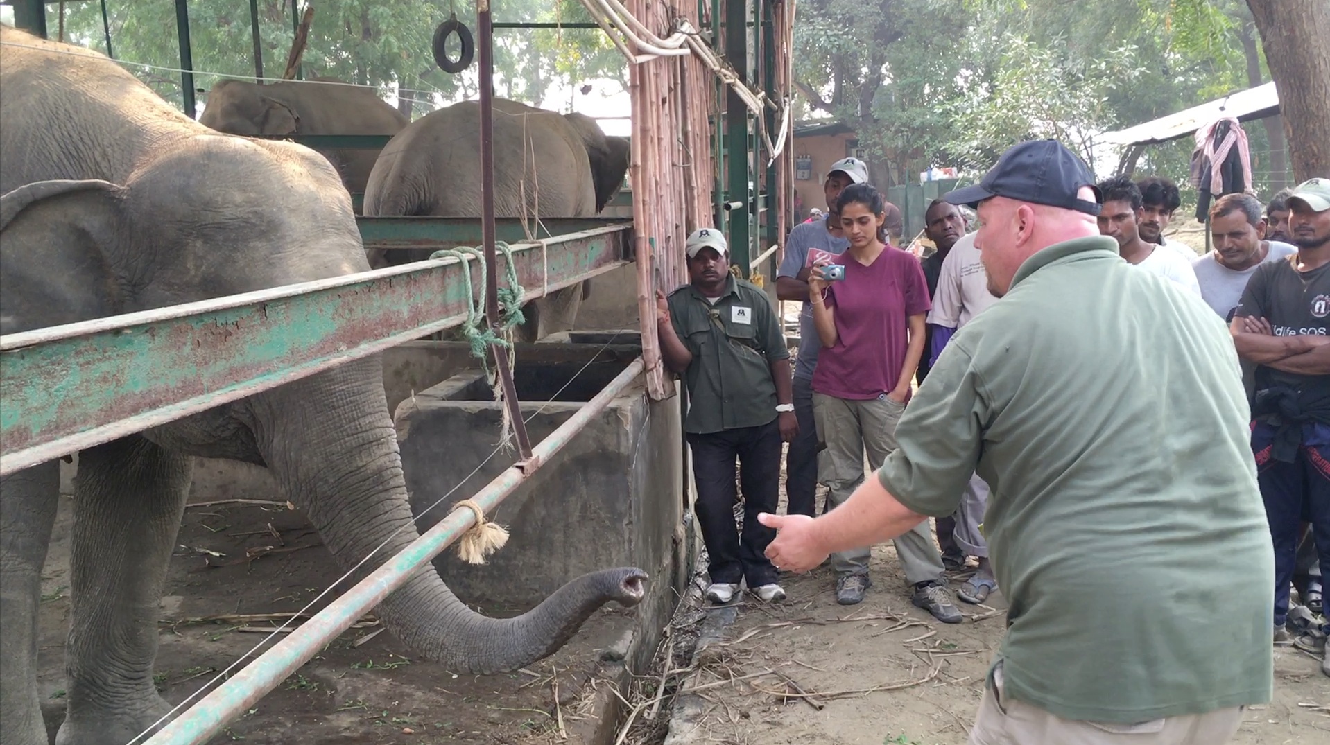 Eric teaching the mahouts in India helpful methods to care for elephants in rehabilitation centers.
