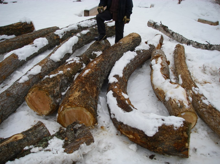 Hand selecting crooked timber. What is typically used for firewood now becomes the highest expression of the craft.
