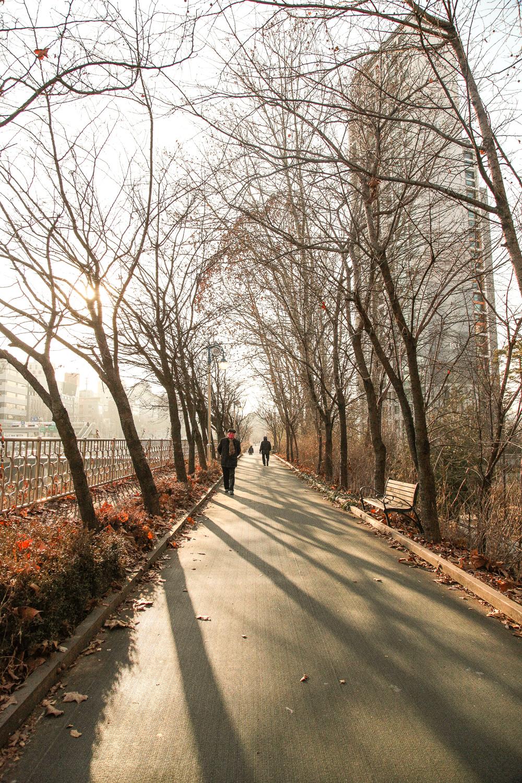 walking seorae village
