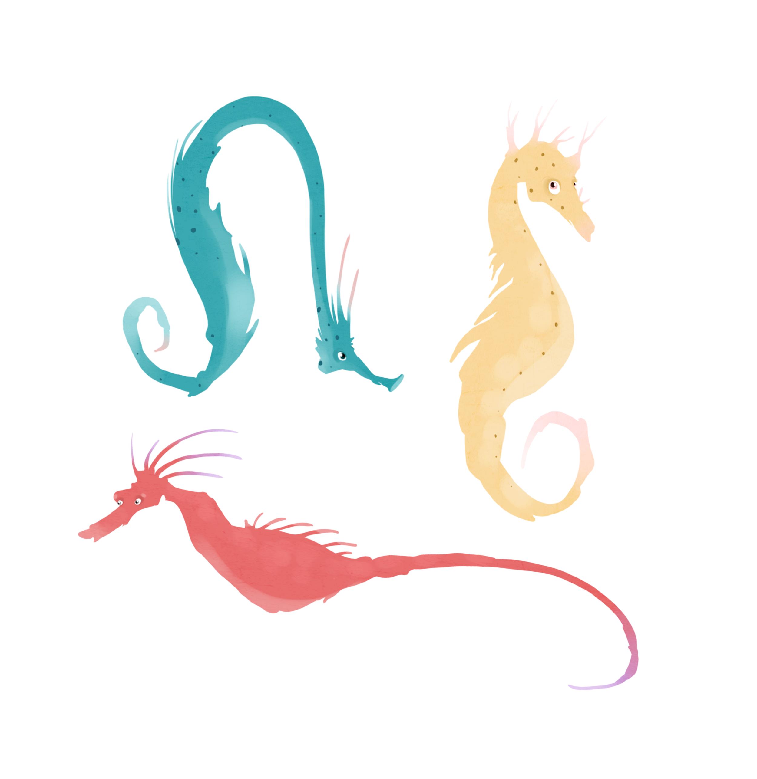 Seahorses.png